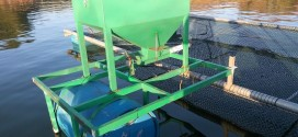 Alimentador solar 100kg